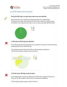SEO Audit HTTP codes