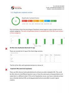 SEO Audit Duplicate content Audit