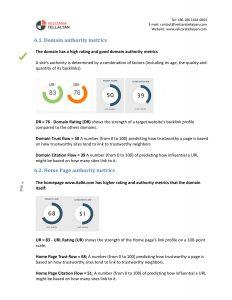Backlink Audit Report-1